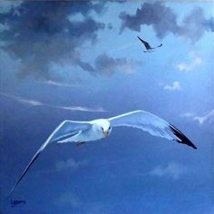 seagull // art