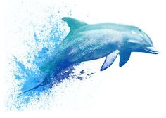 Dolphin - Watercolor Temporary Tattoo