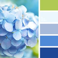 Blue Color Palettes, blue shades, color palette for home, green, green and… Color Schemes Colour Palettes, Blue Colour Palette, Beach Color Schemes, Green Palette, Color Azul, Color Combos, Pantone, Color Balance, World Of Color