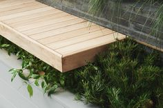 floating wood bench with underplanting || Acre Studio award winning Boutique Garden built for the Melbourne International Flower & Garden Show 2015.