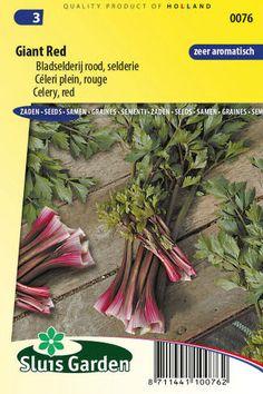 semena stonkovy zeler zeleniny kvetov bylinky sadit pestovat rajcin paprika uhoriek bazalka jahody