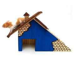 Casinha para Hamster Casa Duplex Roedores Cia dos Coelhos - MeuAmigoPet