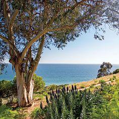 Pacific Palisades, California   Coastalliving.com