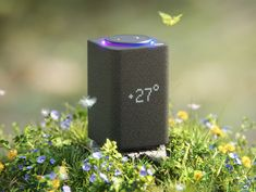 I did it as a training session and learned how to work with grass. Grass - The Grass Essentials by BlenderGuru Amazon Echo, Grass, Essentials, Training, Grasses, Work Outs, Excercise, Onderwijs, Race Training