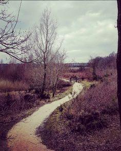running, Land van Cuijk, de Kuilen, natuurmonumenten Landing, Country Roads