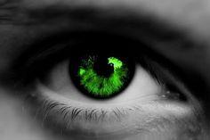 Shane - Green Eyes by Shawn Bridges Packers Gear, Packers Baby, Go Packers, Packers Football, Greenbay Packers, Packers Funny, Bears Football, Football Season, Green Bay Packers Merchandise