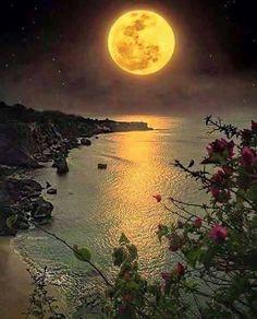 Ömürden bir gün daha geldi geçti, yine gece oldu. Hayatın, sağlığın, her nefesin kıymetini bilerek yaşayana ne mutlu... 🌄