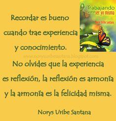 NORYS URIBE SANTANA: REFLEXIONES DE VIDA Nº 28 LA EXPERIENCIA