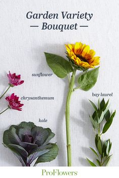 We don't stop at flowers when creating our bouquets and love adding nontraditional harvest products to our arrangements. Bouquet Delivery, Fall Flower Arrangements, Fall Bouquets, Fall Flowers, Shades Of Red, Harvest, Roots, Thankful, Autumn