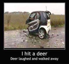 Funny car crash I hit a deer Funny Dirty Adult Jokes Memes Car Jokes, Funny Car Memes, Car Humor, Truck Memes, Funny Humor, Funny Logic, Ford Memes, Hilarious Jokes, Haha
