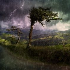 The Storm Before the Calm--a beautiful piece about how, when we go through the really tough times, it is always because we need to do that to grow. We call the storm. Worth reading and reading again. Photos Hd, Rain Storm, Extreme Weather, Thunderstorms, Custom Posters, Ciel, Landscape Paintings, Free Images, Deep