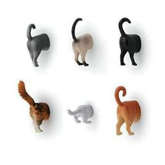 If you& looking for a cute and goofy magnet for your fridge or filing cabinet, check out the Kikkerland Design Cat Butt Magnet. It& a charming design of the back half of a cat, giving everything a more lighthearted tone. Cat Lover Gifts, Cat Gifts, Cat Lovers, Lovers Gift, Crazy Cat Lady, Crazy Cats, Picture Magnets, Cat Decor, Plastic Animals