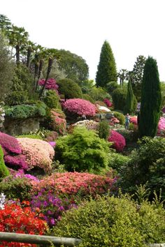 English garden - this is perfect for the hill in our back yard!  The layering of pinks, purples and green is lovely!