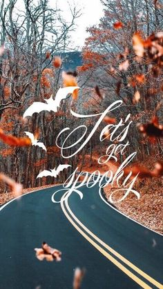 Creepy Funny Happy Halloween Quotes - Time to pick your spooky costumes, and dance on creepy music, have fun being mean because it's Halloween! Halloween Quotes, Holidays Halloween, Spooky Halloween, Halloween Crafts, Happy Halloween, Halloween Decorations, Spooky Costumes, Halloween Countdown, Halloween Backgrounds