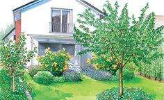 Nach dem Hausbau ist für viele Bauherren Rasen das Mittel der Wahl, um das Grundstück preiswert und pflegeleicht zu begrünen. Hier sind zwei Vorschläge, wie man aus einer solchen Rasenfläche an der Terrasse einen richtigen Garten gestaltet. Mit Pflanzplänen zum Herunterladen und Ausdrucken. – Mehr findet ihr auf unserer Vorher-Nacher Pinnwand