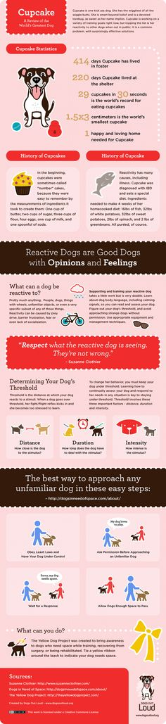 This adorable infographic is from the fabulous folks at Dogs Out Loud.  It's helpful and fun - two of my favorite adjectives! Don't miss the detailed article they wrote about helping your reactive ...