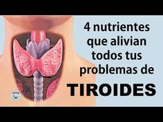 4 nutrientes que alivian todos tus problemas de TIROIDES - YouTube Natural Cures, Natural Health, Healthy Drinks, Healthy Tips, Health Remedies, Home Remedies, Health And Wellness, Health Fitness, Beautiful Love Pictures