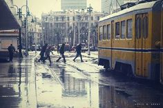 Winter - Alexandria, #Egypt