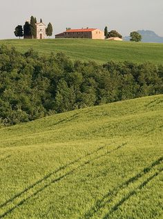 This is the countryside just outside San Quirico d'Orcia in the Val d'Orcia...and the chapel is Vitaleta.