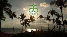 NVP Leadership Meeting Arbonne - Maui, Hawaii January 2015
