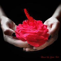 """Post  #: """"Se houver amor em sua vida isso pode compensar mu..."""