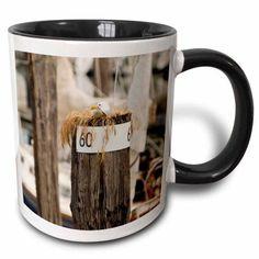 3dRose WA, San Juans, Cap Sante Harbor, Fidalgo Island birds - US48 TDR0423 - Trish Drury, Two Tone Black Mug, 11oz