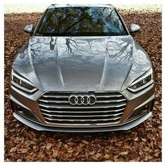 2017 Audi Coupe - Photo by Audi S5, Audi A5 Coupe, A6 Avant, Audi Sport, Fancy Cars, Love Car, Future Car, Dream Cars, Automobile