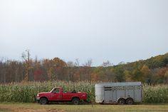 farm day, via Flickr.