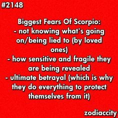Daily updated fun facts on the zodiac signs. Scorpio Traits, Zodiac Signs Scorpio, Scorpio Quotes, My Zodiac Sign, Zodiac Facts, Zodiac Quotes, All About Scorpio, Scorpio Love, Scorpio Woman