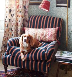 Bailey is sitting cosy on our Savernake armchair in our chenille stripe. A generously proportioned armchair with down-filled cushions for… Wallpaper Furniture, Fabric Wallpaper, Fabric Lampshade, Lampshades, Duvet, Striped Sofa, Interior Design Books, Antique Interior, Antique Brass