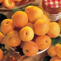 Stark® SweetHeart™ Apricot - Apricot Trees - Stark Bro's these have a pit that taste just like an ALMOND.  They are ediable. Two trees in one...a bargain.