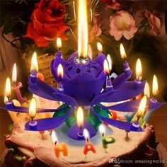 Buy High-quality Double 14 Candles Musical Lotus Flower Rotating Birthday Party Gift Lights at Wish - Shopping Made Fun Lotus Birthday Candle, Birthday Cake With Candles, Sparkle Cake, Buy Birthday Cake, Birthday Cake Toppers, Happy Birthday Music, Birthday Wishes, Birthday Songs, Special Birthday
