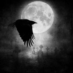 To the Crow, that I am . . . May you bless thee with your light tonight and protect the one I love against all harm.