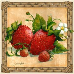 1-strawberries-janet-stever.jpg (JPEG Image, 900 × 900 pixels)