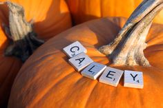 Beth & Andrew Nelson || Pumpkin Patch Maternity Shoot