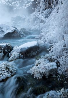 Cold spell at Box Canyon Springs in Idaho