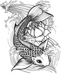 Leyenda del pez koi