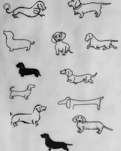 Tatuaje Duchround - Ink - ideas and such (tatuajes) - Arte Dachshund, Dachshund Puppies, Dachshund Love, Dachshunds, Dachshund Drawing, Dog Tattoos, Body Art Tattoos, Small Tattoos, Tiny Tattoo