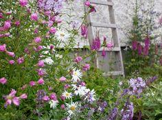 Att anlägga en mormorsrabatt | UnderbaraClara | Bloglovin' Dream Garden, Garden Art, Garden Design, Garden Ideas, My Flower, Flowers, Garden Cottage, Countryside, Landscape
