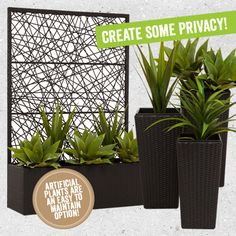 Looking for some privacy in your outdoor area? Screens and plants are the perfect solution.