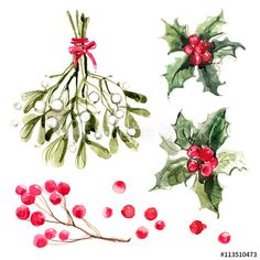 Mistletoe with red ribbon, holly branches with red berries. Christmas ornaments from the branches painted with watercolors on white background.