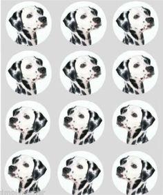 12 Dalmation dog design rice paper fairy / cup cake 40mm ... https://www.amazon.com/dp/B008DFVCK6/ref=cm_sw_r_pi_dp_x_fnbGybA8YF2XM