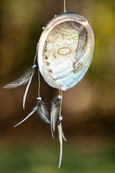 Stones: Rainbow Moonstone  Feathers: Silver Phoenix Coque  Size: 4    *Note, due to the similar colors and iridescence, moonstone tends to Bedroom Crafts, Abalone Shell, Sun Catcher, Art N Craft, Intuition, Driftwood, Crafty, Dreaming Of You, Shells