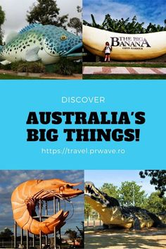 Quirky in Australia travel, what to see in Australia, unusual attractions Australia, big monuments Australia Travel Guides, Travel Tips, Travel Hacks, Travel Articles, Travel Stuff, Australia Travel Guide, Australia Tourism, Visit Australia, New Zealand Travel