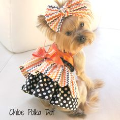 Adorable Custom Designer Dress Made to fit your Pup. Please sendee measurements Neck, Girth, and Length. It takes 3-4 Weeks for Delivery to make and Postman to Deliver, but it's worth it! Kissies  Please add your monogram initials or name in the notes section.    Bow sold separately http://chloep...