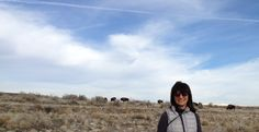 Antelope Island, before the spring bugs!