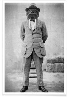 Walrus Man als Premium Poster door John Keddie | JUNIQE