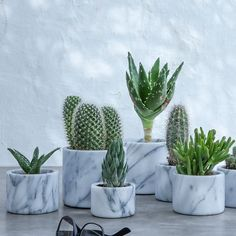 Pot en marbre moyen modèle cm, Sevan - New Deko Sites Cacti And Succulents, Cactus Plants, Marble Room Decor, Plants Are Friends, Bedroom Plants, Cactus Y Suculentas, Home And Deco, Home Decor Accessories, Indoor Plants
