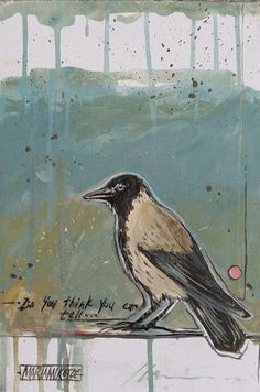 do you think you can tell Mariaan Kotze bird painting acrylic on canvas stretched blocked Furniture Decor, Painted Furniture, Bird Painting Acrylic, South African Artists, Decorative Items, The Secret, Random Stuff, Art Ideas, Birds