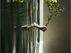 99 excelentes ejemplos de fotografia con perspectiva forzada - Taringa!